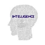 teste de inteligencia