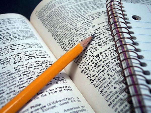 Study Quizzes